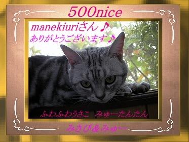 みさぴさん-500記念.jpg