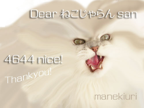 manekiuri-4644.jpg