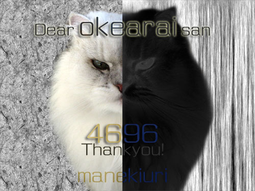 manekiuri-4696.jpg