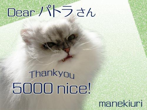 manekiuri-5000.jpg