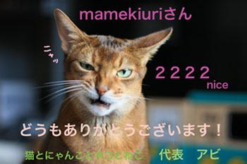 okearaiさん-2222.jpg